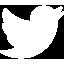 twitter sharing logo